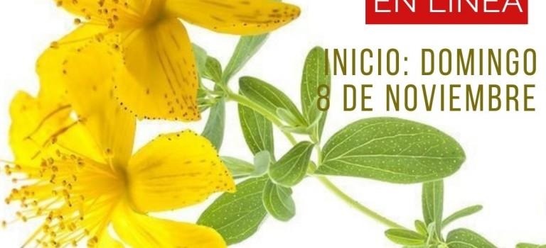 Curso de microdosis de plantas medicinales – Noviembre 2020
